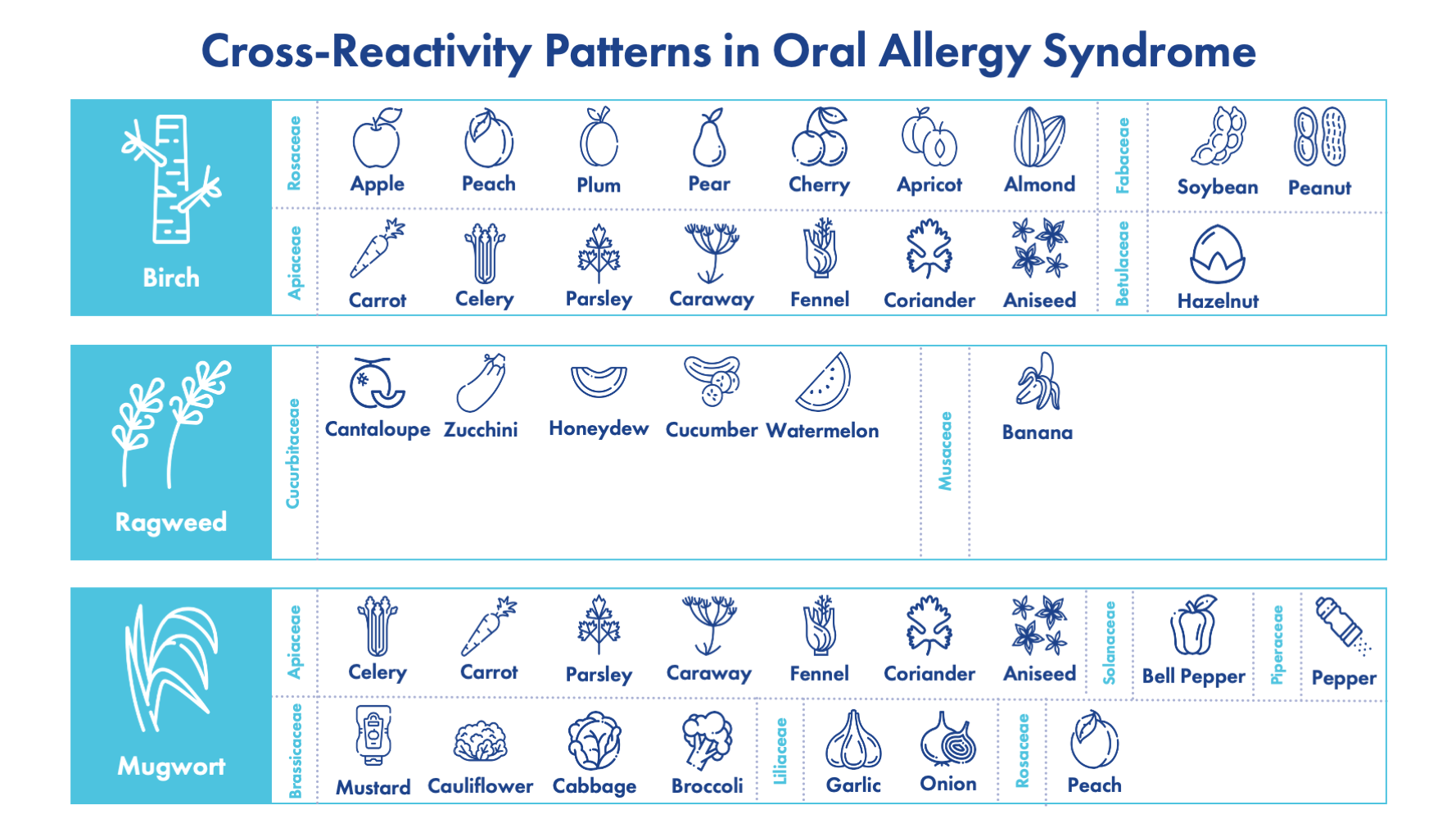 Cross Reactivity Patterns in Oral Allergy Syndrome