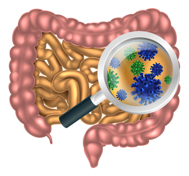 Leaky Gut: How and Why It Occurs